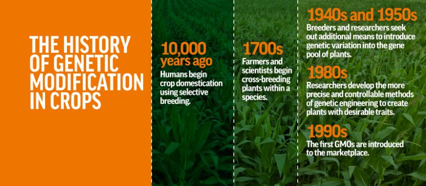 GMO_History_v1_0